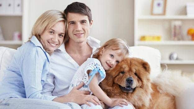 Wills & Trusts dog-young-family Direct Wills New Cross Gate